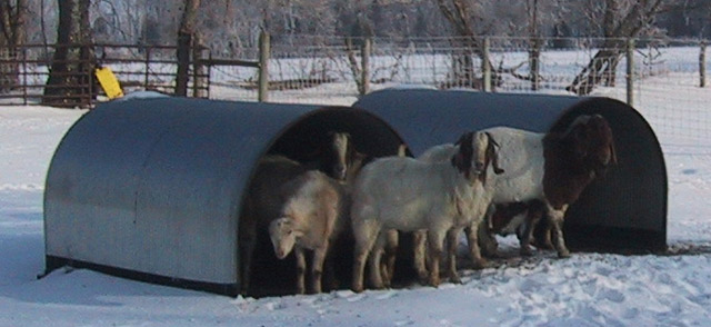 Livestock Shelters Portable Steel Shelters Huts For Swine Cows